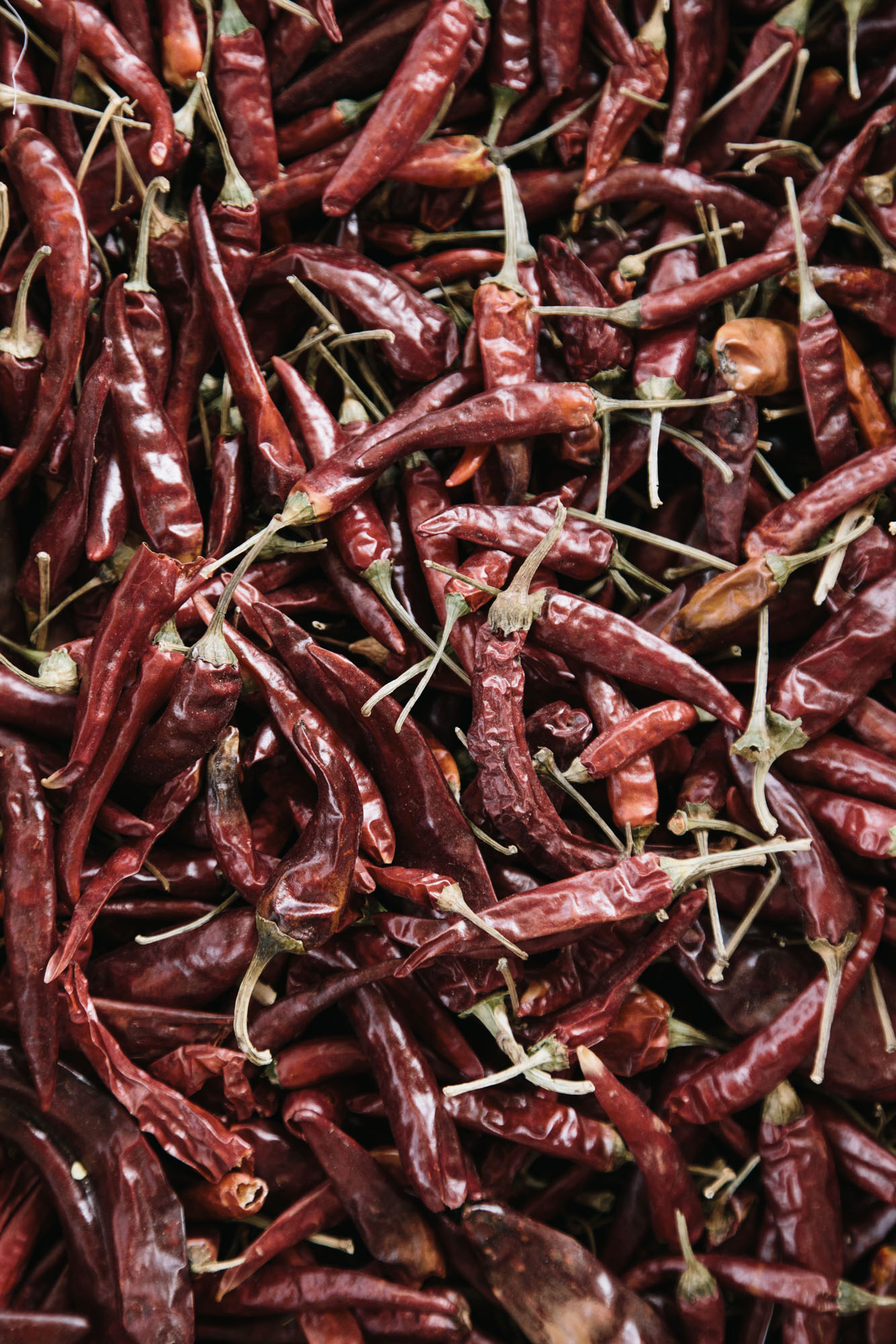 food-stock-photography-chili-peppers.jpg