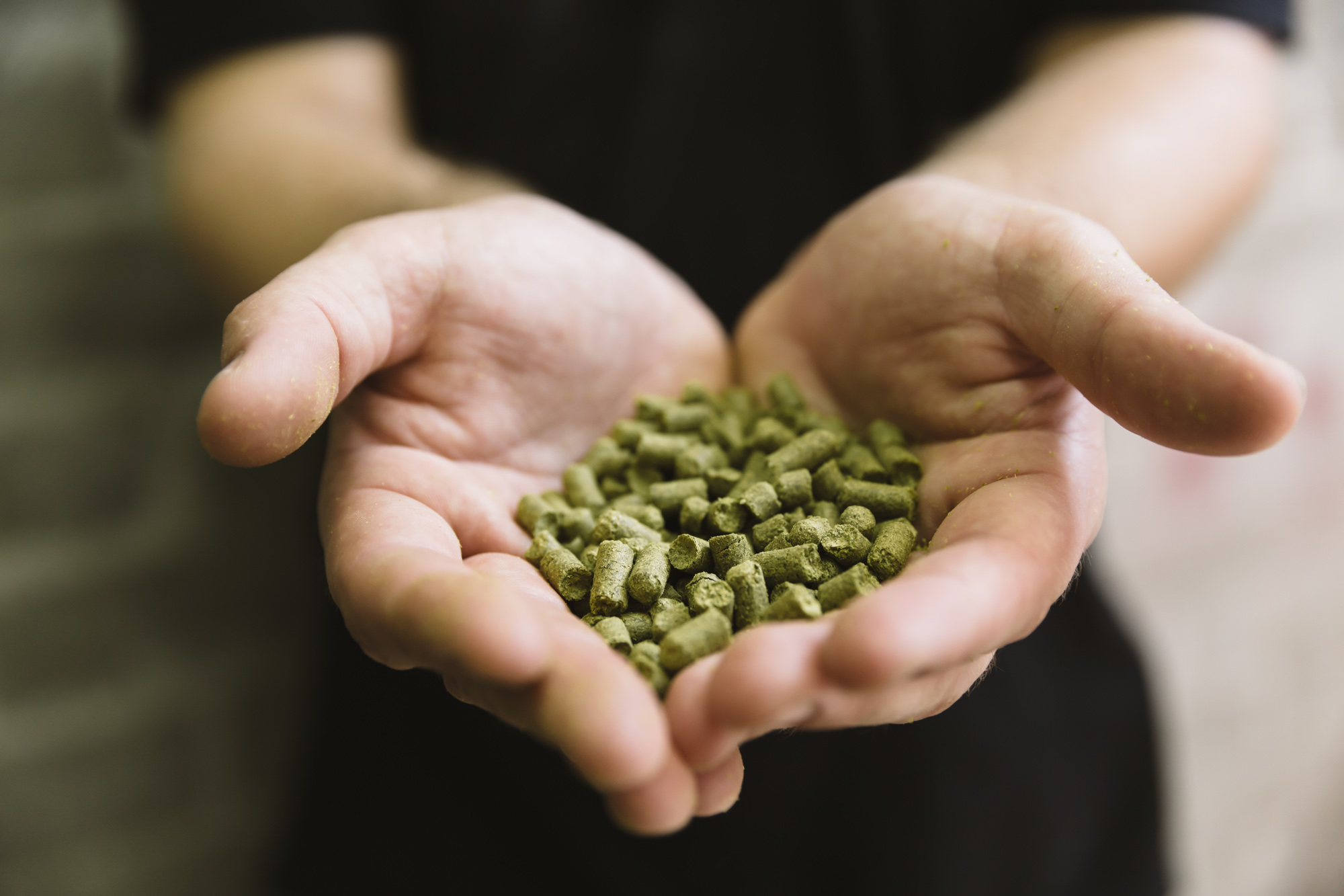 hops-hand-food-ingredient-photographers